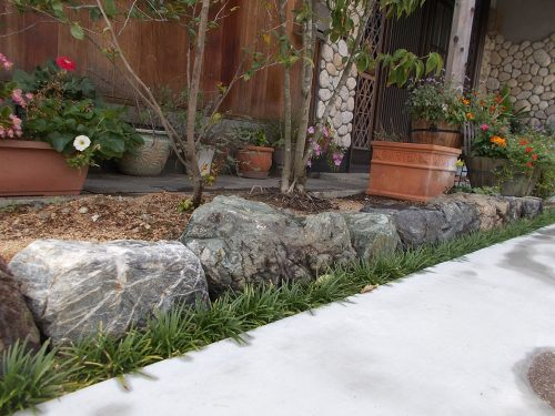 加西市 造園 和慶の庭